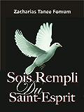 Sois Rempli du Saint-Esprit (Aides Pratiques Pour Les Vainqueurs t. 17)