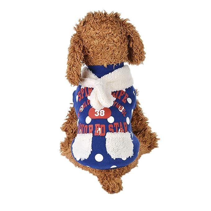 Ropa para Mascotas,Dragon868 Moda Encantadora Invierno Caliente Letra Impresa Camisetas de Mascotas para Perros pequeños: Amazon.es: Ropa y accesorios
