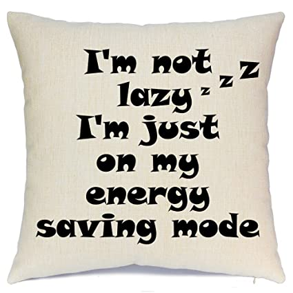 Throw Pillow Cover Quotes Throw Pillows Covers With Funny
