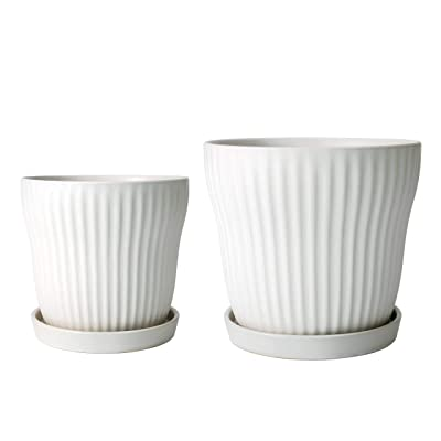 Set of 2 Modern White Ceramic Planter Pot with Saucer, Drainage Hole and Mesh Net, 7 Inch & 9 Inch : Garden & Outdoor
