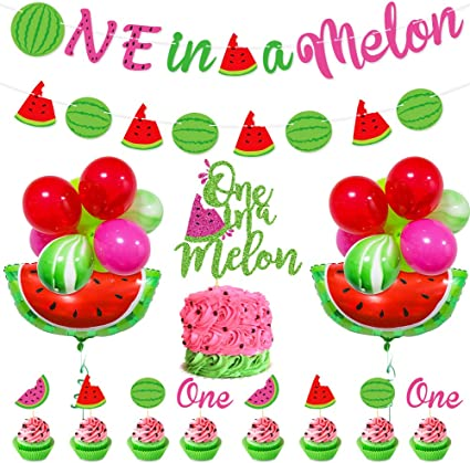 Watermelon Plates Summer Party One in a Melon Watermelon Birthday Fruit Party Supplies Watermelon Party Melon Party Plates