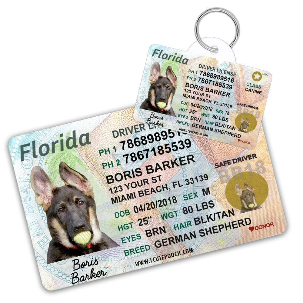 Florida Driver License Custom Dog Tag for Pets and Wallet Card - Personalized Pet ID Tags - Dog Tags For Dogs - Dog ID Tag - Personalized Dog ID Tags - Cat ID Tags - Pet ID Tags For Cats by 1 Cute Pooch