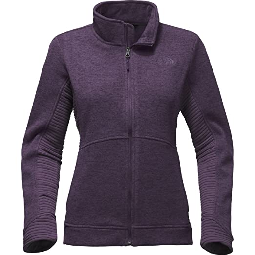 d756a1443 Amazon.com: The North Face Women's Indi 2 Jacket (Large, Dark ...