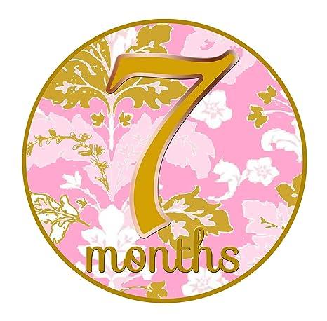 Amazon.com: mumsy Ganso Mes Pegatinas Baby Girl Mensual ...