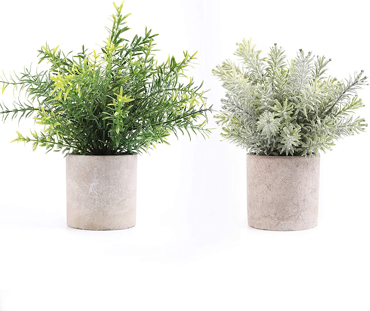 YCS Artificial Plants Potted Faux Fake Mini Plant Bicolor Mini Potted Plants That Includes Artificial Pine and Rosemary in Gray Pot for House, Farmhouse, Bathroom,Office, Home Decor(Set of 2) …