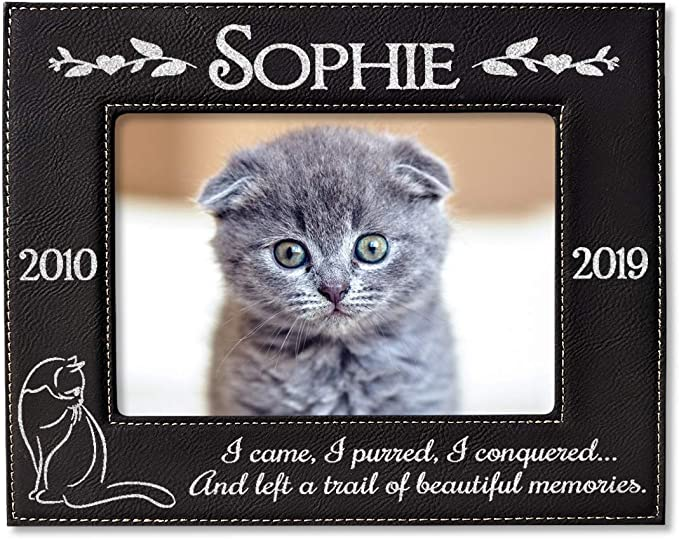 Pet Loss Memorial Rememberance Cat Mom Gift Gift for Her Portrait Handpainted on a Wine Glass Personalized Cat Painting on Bar Decor