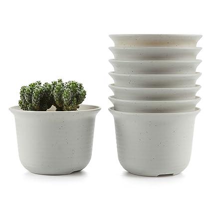 amazon com t4u 5 inch plastic round succulent plant pot cactus