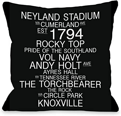 Amazon Com One Bella Casa Knoxville Tennessee Landmarks Throw Pillow By Obc 18 X 18 Black White Home Kitchen