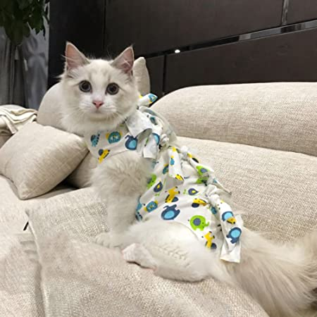 Amazon.com : JIAN YA NA Professional Cat Recovery Suit for Abdominal Wounds and Skin Diseases E-Collar Alternative Cat Sterilization Surgical Suit After ...