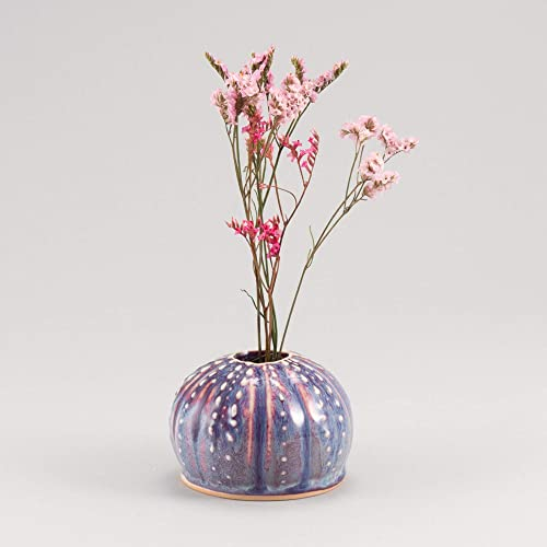Georgetown Pottery Handmade Sea Urchin Ikebana Vase, Bud Vase, Air Plant Pot, Candlestick Holder, Orchid, Made in USA, Porcelain Ceramic
