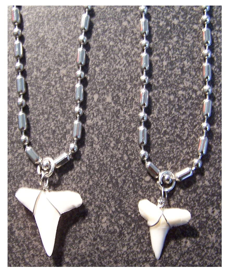 10 Pc Bulk Lot of Real Shark Tooth Pendant on 18 Inch Solid Stainless Steel 2.4mm Ball Chain Necklace