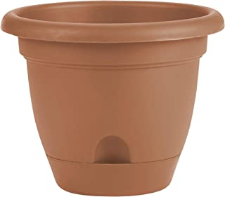 product image for Bloem FBA LP1246 Lucca Planter, 12-Inch, Terra Cotta