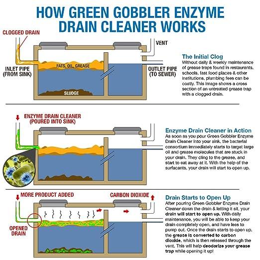 Green Gobbler Enzimas trampas de grasa 4 galones claro ...