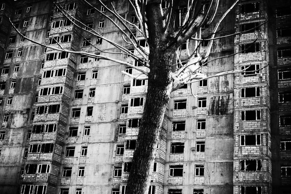 Leica M Monochrom Camera Photo