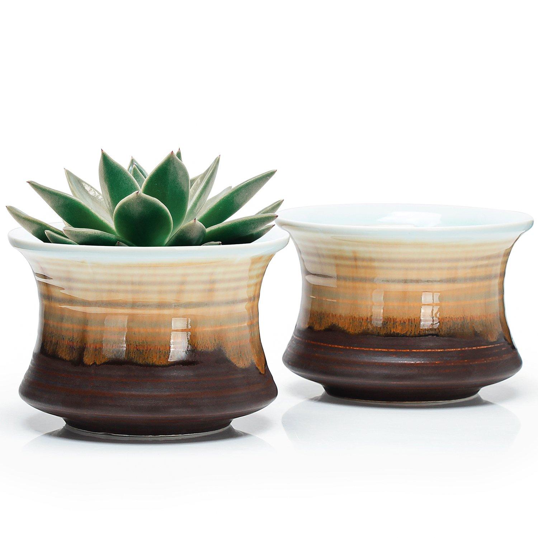 Greenaholics Succulent Plant Pots - 4.3 Inch Flowing Glaze Ceramic Bottle Pots, Cactus Planters, Flower Pots with Drainage Hole, Chocolate Black, Set of 2