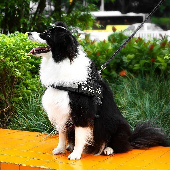 xcbvfgfgjhgvfj Ligero Ajustable Mascota Perro Sin tirón Arneses ...