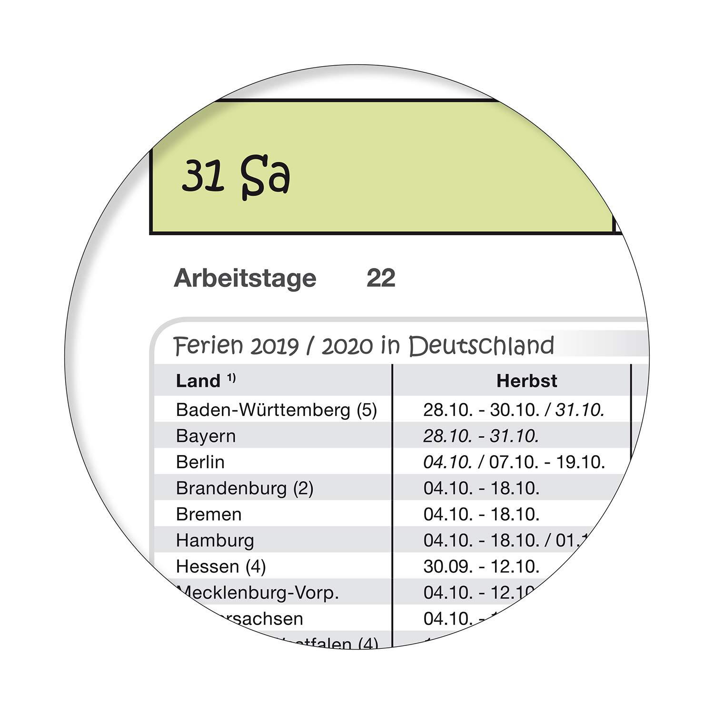 Sch/ülerkalender//Planer 2019//20 DIN A2 59,4 X 42,0 cm abwischbar gerollt mit Beschriftungsfeld gr/ün