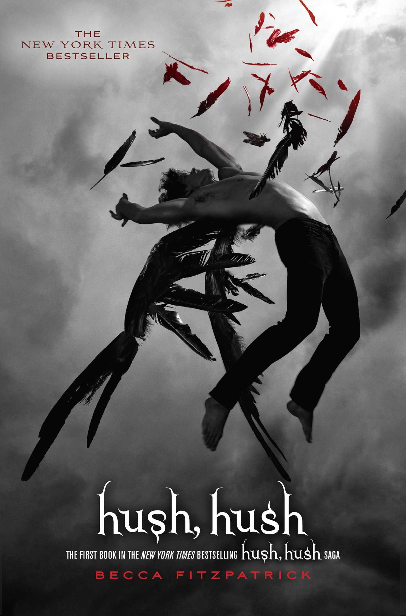 Image result for hush hush book cover