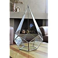 Base Decorativa Terrario Geométrico Poliedro Caja Suculentas Diamante Gota Vidrio Terrarium Maceta Regalo Dorado 40cm (16pulgadas)
