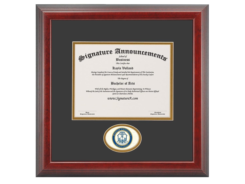 Signature Announcements Webster-University Undergraduate Sculpted Foil Seal Graduation Diploma Frame 16 x 16 Cherry