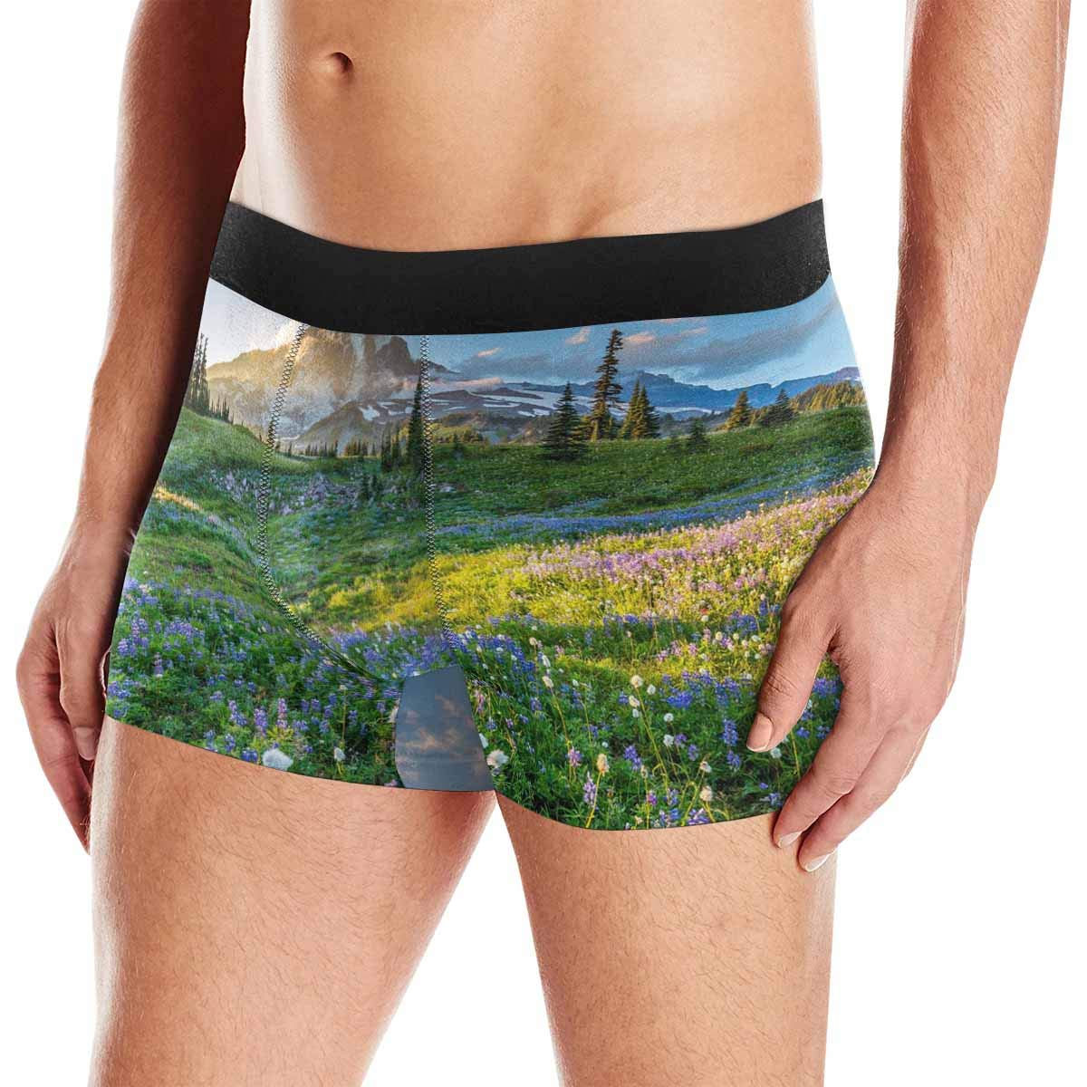 InterestPrint Mens Novelty Boxer Briefs Underpants Philippine Flowers Rainfores XS
