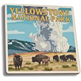 Yellowstone National Park - Old Faithful Geyser and Bison Herd (Set of 4 Ceramic Coasters - Cork-backed, Absorbent)