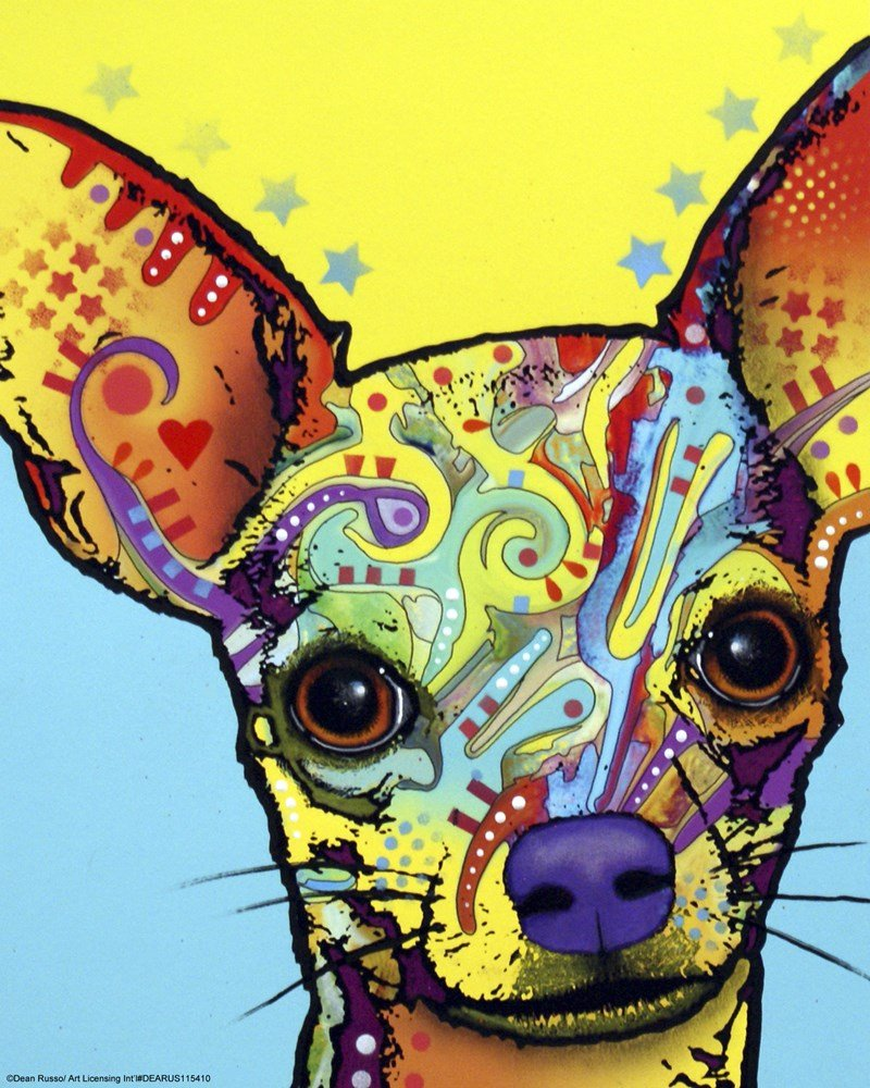 Amazon.com: Great Art Now Chihuahua I by Dean Russo Art Print, 8 x ...