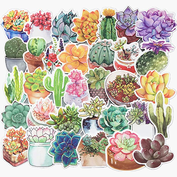 70-Pcs PVC Stickers Vinyl Colorful Succulent Plants Laptop Car Decals Waterproof Sunlight-Proof Durable for Cars Motorbikes Luggage Skateboard Decor
