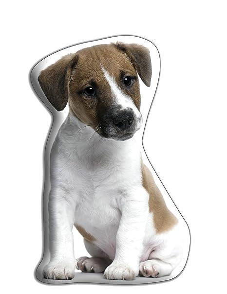 Jack Russell perro regalo - hermoso grande Cuddle cojín ...