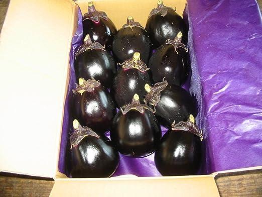 奈良県産 大和丸なす 8~11本入り 約2kg詰め 茄子