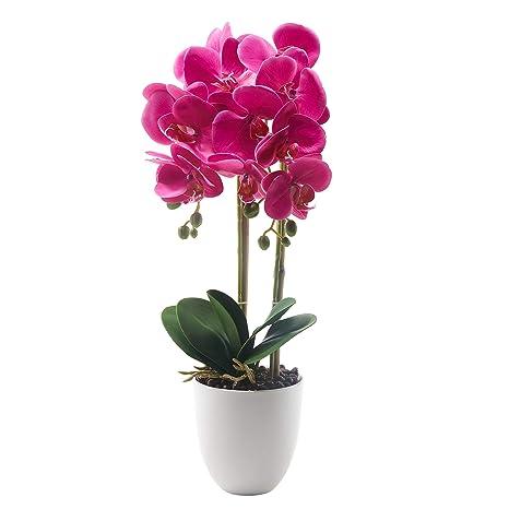 Künstliche orchideen im topf