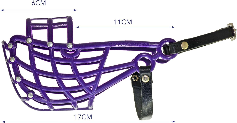 Amordazar Don Pare Modelo 103 de formación y el hocico de transporte para perros de tamaño medio con un galgo cabeza estrecha en púrpura también carreras hocico y que corre de boca por Amathings