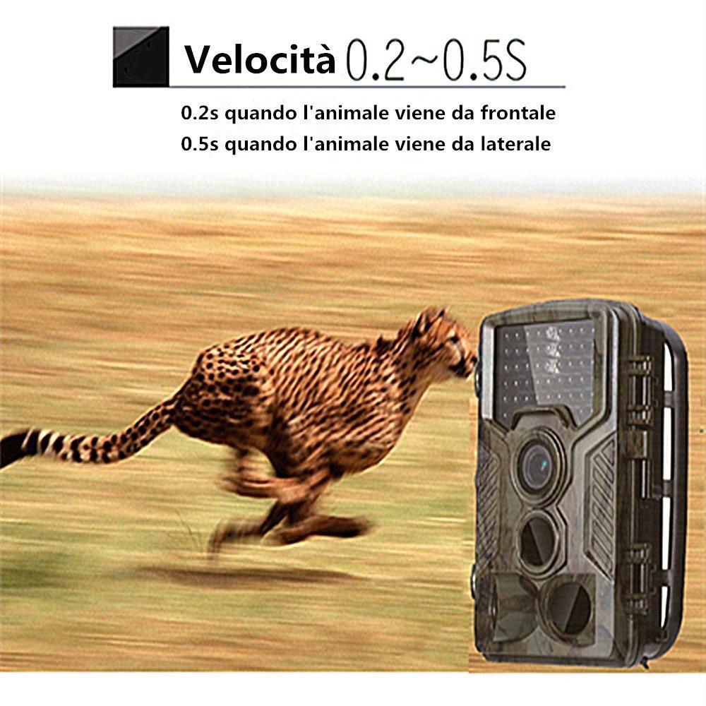 Colleer Kamera-Jagd Machine Kamera 1080P HD 16/MP mit gro/ßer Reichweite 120//° Infrarot Nachtsicht Trail Camera ip56,2.4/LCD Bildschirm