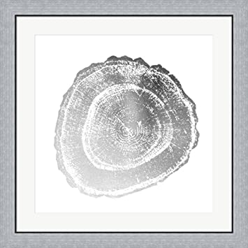 Silver foil tree ring iii metallic foil by vision studio framed art print wall picture