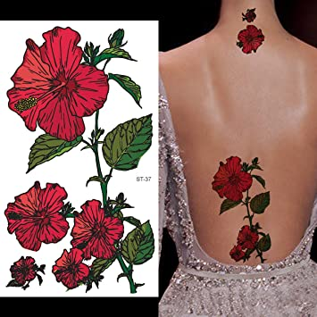 Amazoncom Supperb Temporary Tattoos Red Morning Glory Beauty
