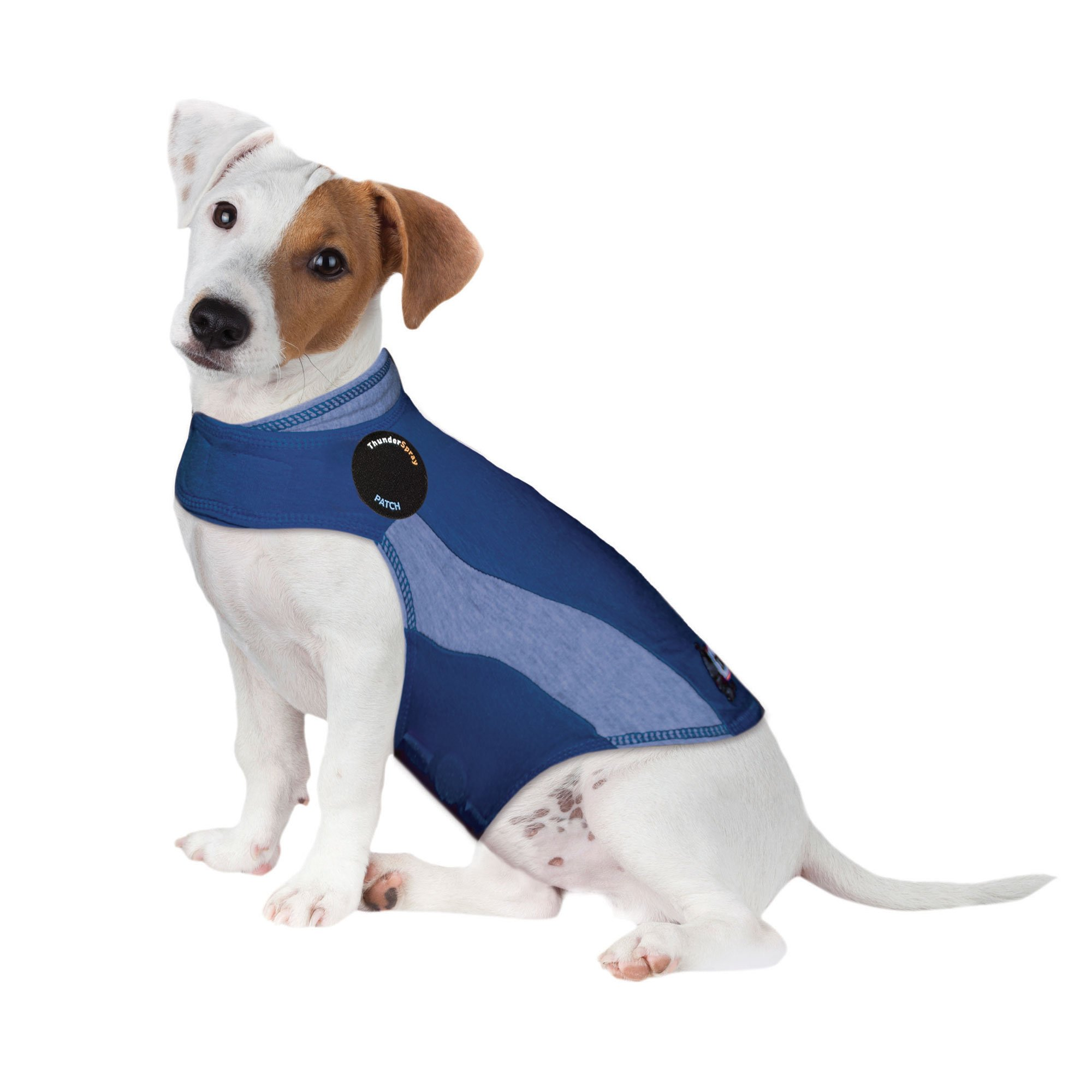 ThunderShirt Polo Dog Anxiety Jacket | Vet Recommended Calming Solution Vest for Fireworks, Thunder, Travel, & Separation | Blue, Small by Thundershirt