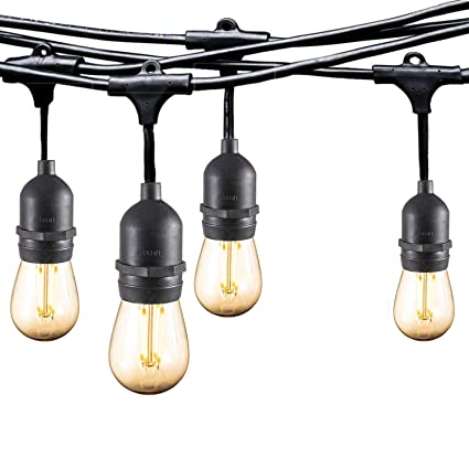 Ashialight 12 Volt Outdoor String Lights with Transformer - Low Voltage,  Weatherproof, 4W15pcs Edison 12 Volt LED Bulbs, 48ft Paito Lights Heavy  Duty