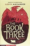 The Book of Three (Usborne Modern Classics)