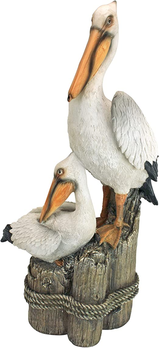 artist art reproduction birds US,small ink realism PELICAN AND GULL