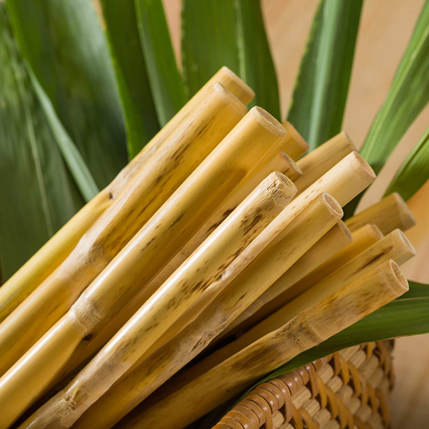 Bio Earthware   Natural & Organic Bamboo Grass Straws   Washable & Reusable  Drinking Straws  Biodegradable, Environment Friendly & Compostable    Natural Alternative to Plastic (Set of 10) : Amazon.in: Health & Personal  Care