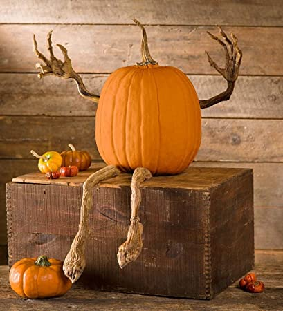 Set of 4 Halloween Pumpkin Appendages Enchanted Vine Arms and Legs Other Holiday & Seasonal Décor