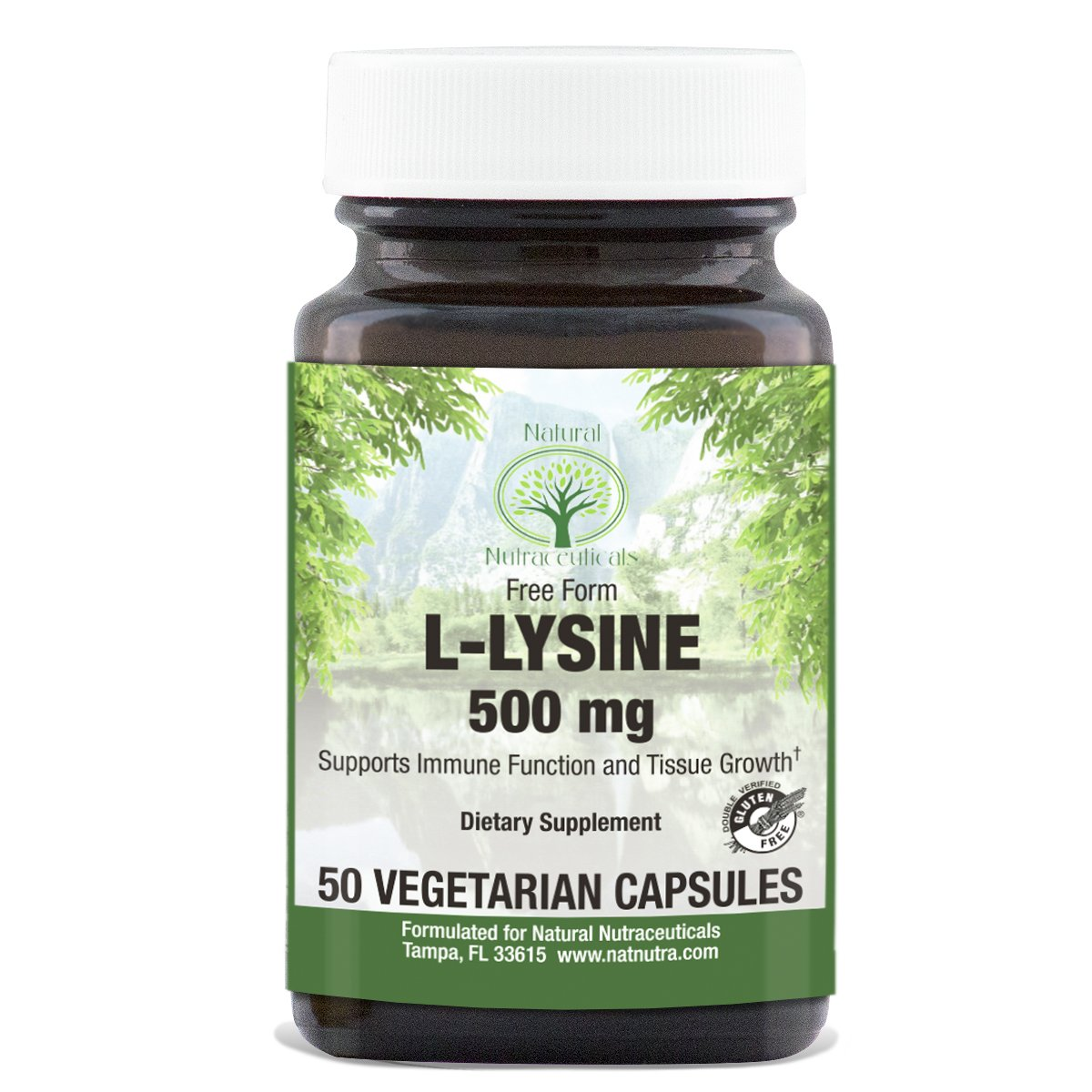Vegetarian L Lysine HCl by Natural Nutra – 500 mg, 50 Capsules – Free Form Alpha Amino Acid