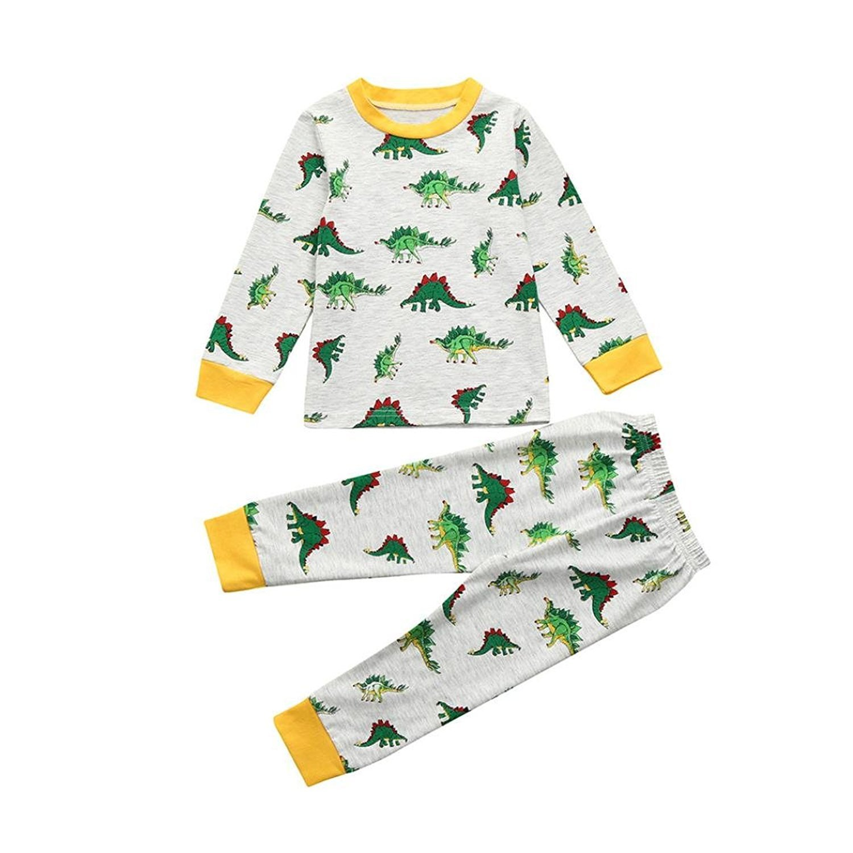 f9d8690baab Webla Kids Toddler Girls Boys Tops+Pants Dinosaurs Home Sleepwear Pyjamas  Set for 1-7 Years Old Grey  Amazon.co.uk  Clothing