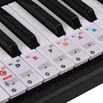 ammoon Pegatinas para Pianos Etiquetas Engomadas del Teclado de Piano para Teclados (Blanco Transparente)