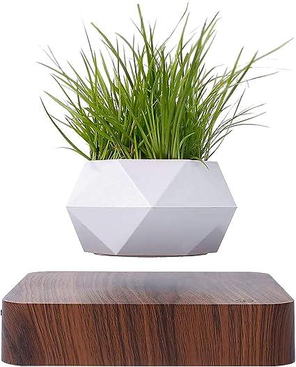 Amazon Com Levitating Air Bonsai Pot Creative Rotation Flower Planters Magnetic Levitation Suspension Plant Pot For Home Desk Decor Garden A Sports Outdoors