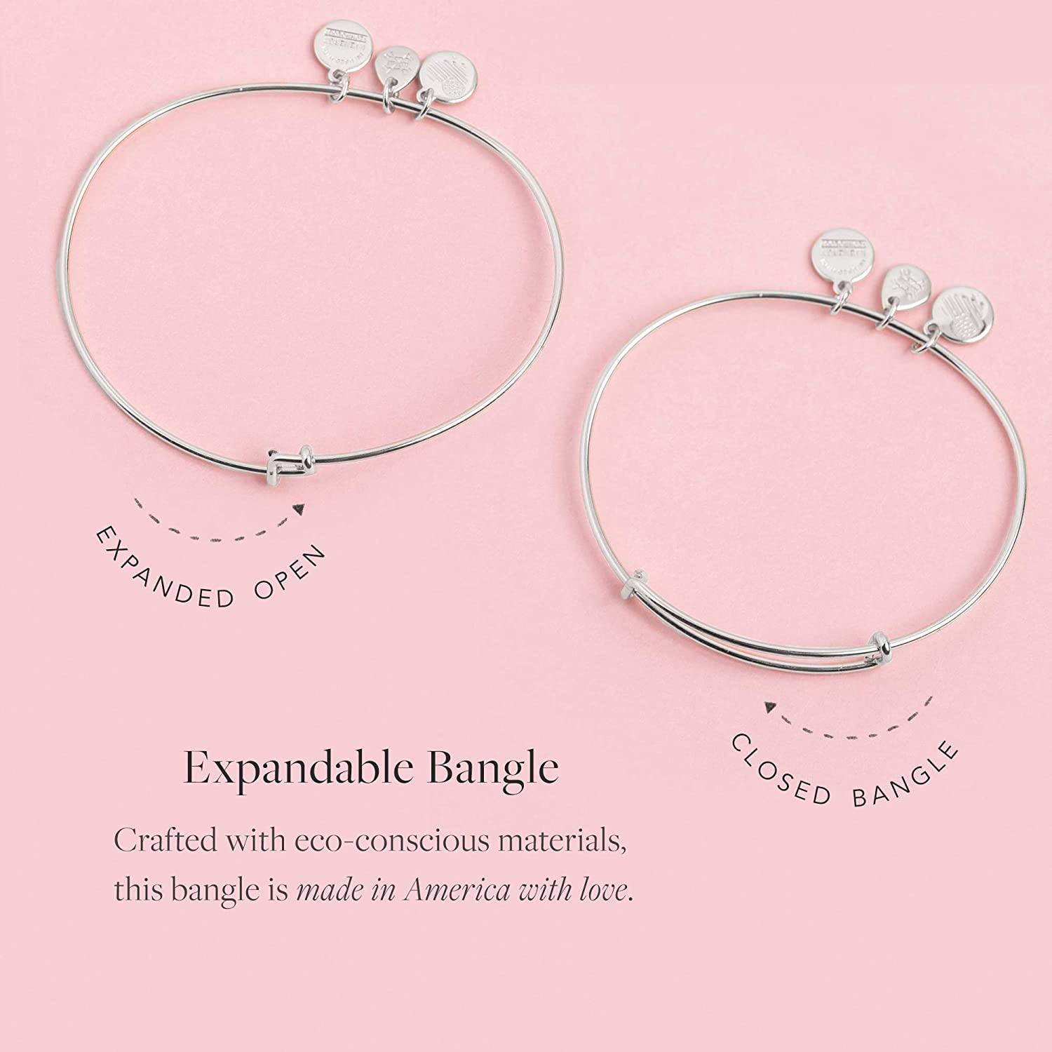 Alex and Ani Soul Sister Expandable Bangle Bracelet for Women, Friendship Inscription Charm, Rafaelian Silver Finish, 2 to 3.5 in: Jewelry