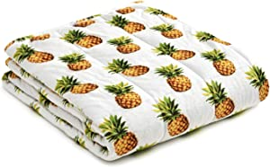 YnM Weighted Blanket — Heavy 100% Oeko-Tex Certified Minky Material with Premium Glass Beads (Pineapple, 60''x80'' 20lbs), Suit for One Person(~190lb) Use on Queen/King Bed