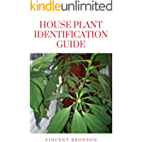 House Plant Identification Guide : Houseplants help keep the air in your house clean along with increasing the beauty of…