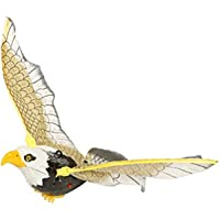 Webby Flying Eagle Bird String to Hang. Battery Operated Toy, Multi Color