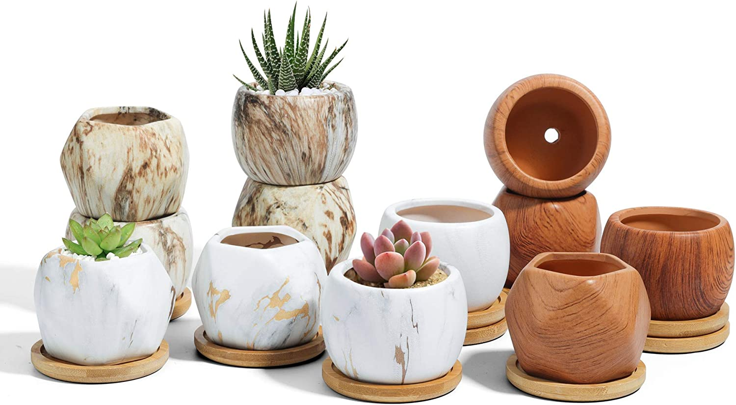 T4U 2.5 Inch Ceramic Succulent Pots Collection with Bamboo Tray Set of 12, Multi Color Small Plant Pot Marbleize Wood Grain, Geometric Cactus herb Planter Container for Indoor Home Office Decoration